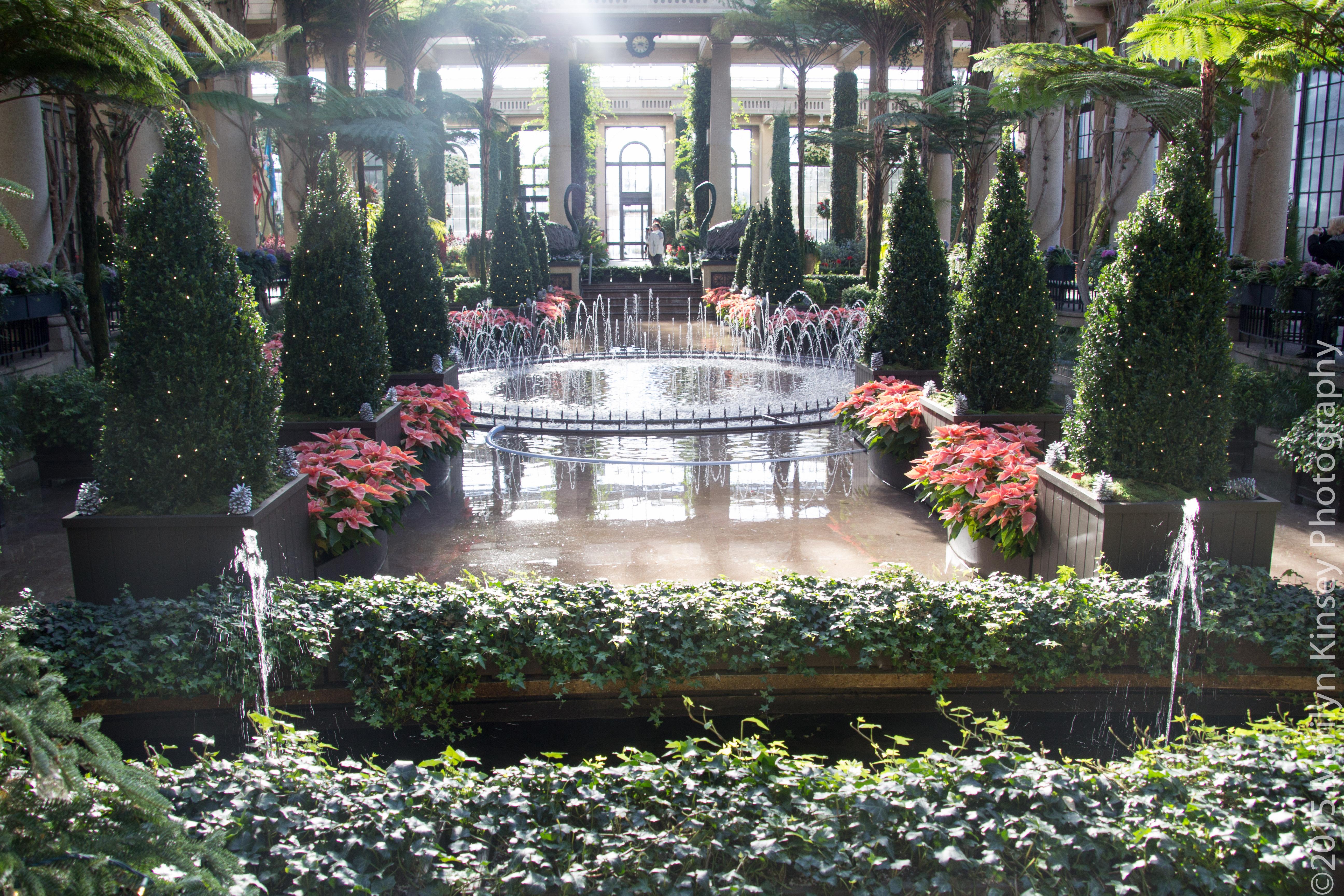 Meetup longwood gardens a shutter life for Garden pool meetup