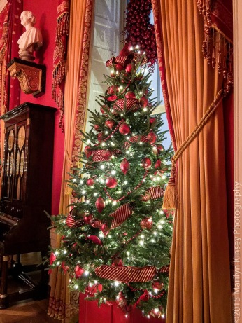 Red Room Tree